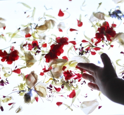 light-table-flower-activity