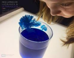ana cristales 1